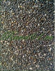 Семена чиа (1кг)
