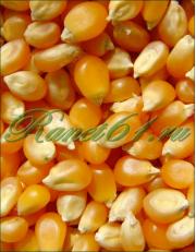 Кукуруза для попкорна (5 кг)