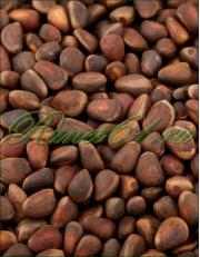 Кедровый орех в скорлупе (1кг)