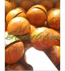 Макадамия орех в скорлупе крупный (5кг)