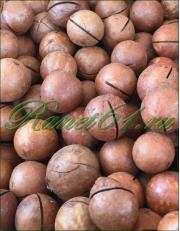 Макадамия орех в скорлупе мелкий (4,9кг)